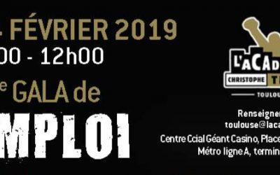 Gala de l'emploi avec l'Académie Christophe Tiozzo à Toulouse